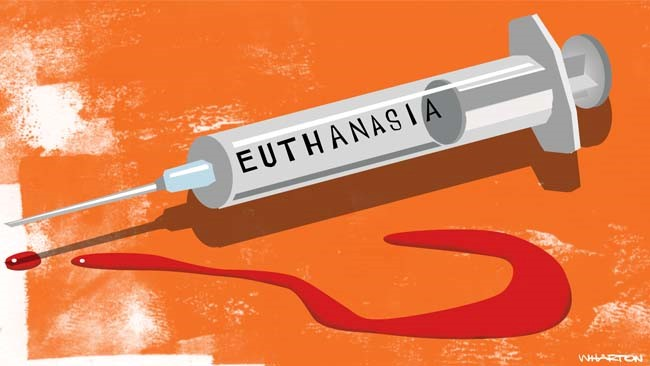 What does essays on euthanasia focus on?