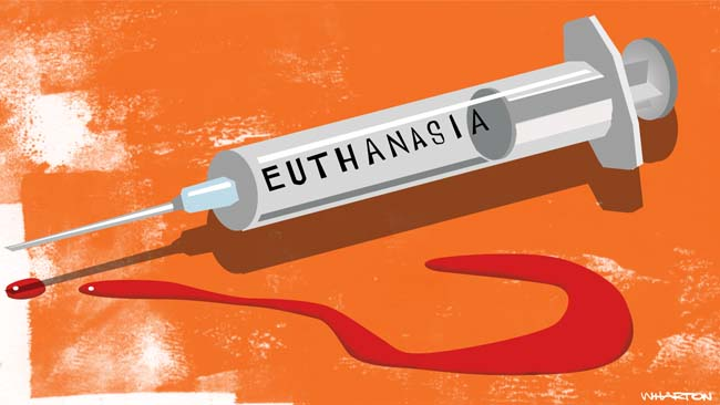 What Essays on Euthanasia Are All About